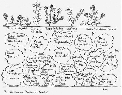 cottage garten pflanzplan – godsriddle, Haus und garten
